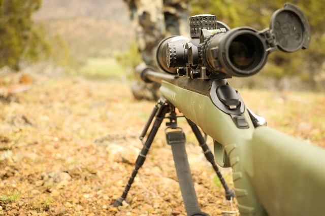 Best thermal scopes for hunting