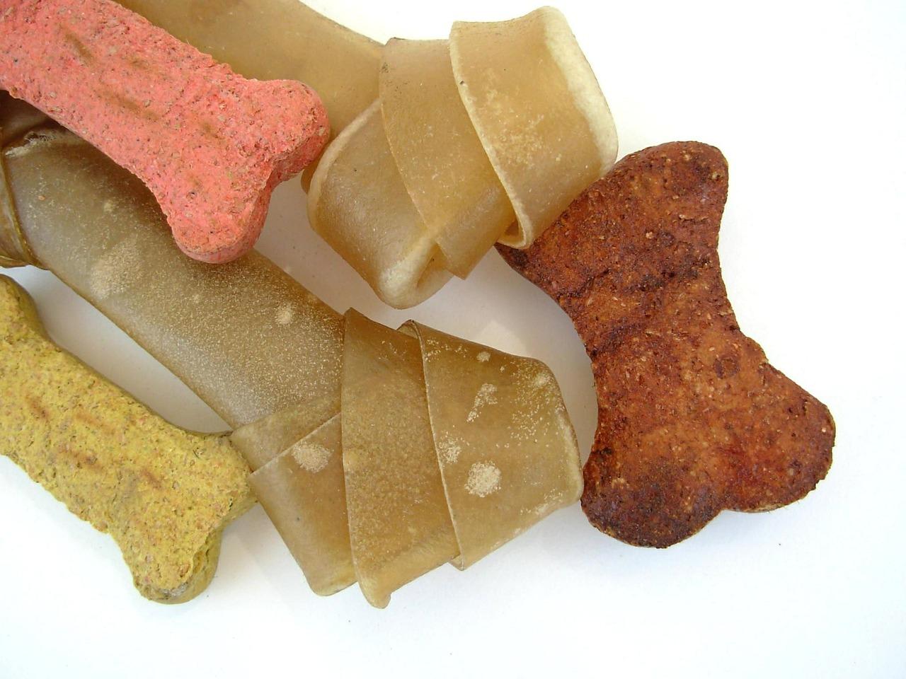 Advantage of grain-free dog food vs classical dog food
